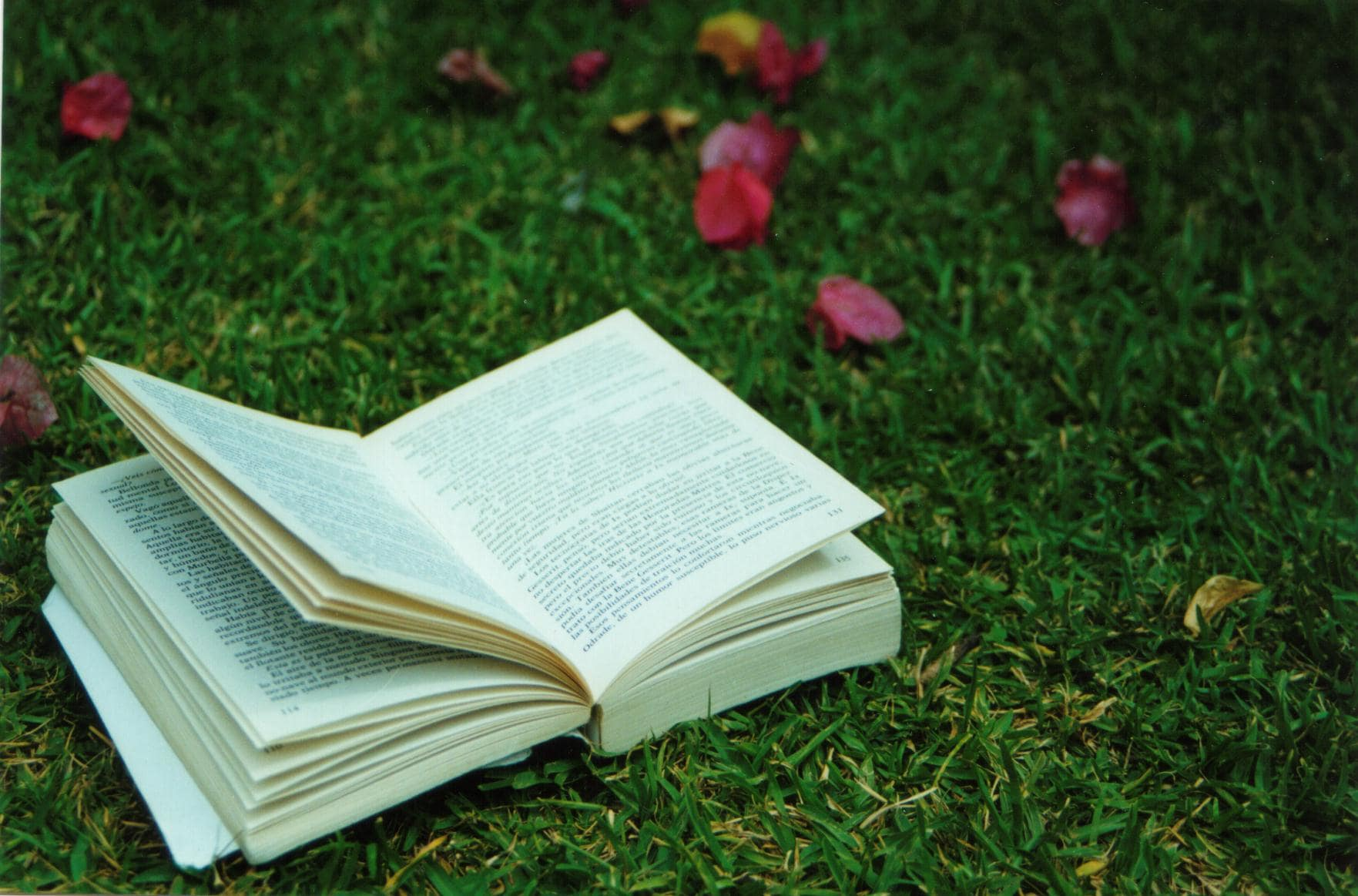 open-book-on-grass